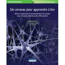 Cerveau pour apprendre à lire